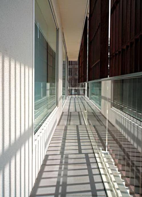 大树,阳光和微风:九树住宅设计-室内设计-环艺设计-第